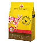 Brabanconne 日常系列 幼貓雞肉配方 20kg (001940) 貓糧 Brabanconne 寵物用品速遞
