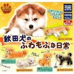 日本直送 狗公仔擺設 秋田犬的蓬鬆日常 一套五隻 生活用品超級市場 狗狗精品