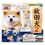 日本直送 狗公仔擺設 秋田犬的看家日常 一套五隻 生活用品超級市場 狗狗精品