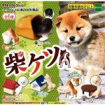 日本直送 狗公仔擺設 柴犬之小屋 第2彈 一套六隻 (TBS) 生活用品超級市場 狗狗精品