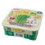 Petio 日本產自種貓草方便套裝 (91600949) 貓咪保健用品 貓咪去毛球 寵物用品速遞