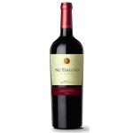 MI TERRUÑO Reserve Cabernet Sauvignon 2017 750ml (400275) 紅酒 Red Wine 阿根廷紅酒 清酒十四代獺祭專家