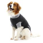Buster 康復用具 L (273973) 狗狗 狗衣飾 雨衣 狗帶 寵物用品速遞