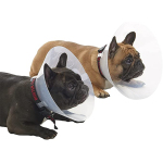 Buster 短吻犬種專用頸圈套裝 E-Collar for Brachycephalic Breeds Starter Set 大碼 (273504) 狗狗 狗衣飾 雨衣 狗帶 寵物用品速遞
