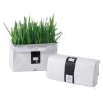 DIY 有機無土水培種植貓草 一個裝 貓咪保健用品 貓咪去毛球 寵物用品速遞
