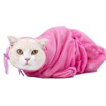 洗澡神器 貓咪多功能洗貓袋 (顏色隨機) 貓咪日常用品 其他 寵物用品速遞