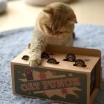 貓咪必玩 瓦楞紙打地鼠玩具 貓咪玩具 其他 寵物用品速遞