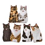日本貓部NEKOBU 超可愛貓咪伸脷利是封 一套八個 貓貓 貓咪飾物 寵物用品速遞