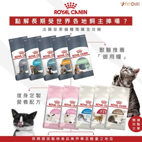 PetChill瘋狂喵-我愛好貓砂-最愛瘋狂寵物用品速遞-貓砂-貓糧-貓零食-貓狗糧至抵保證-RoyalCanin-法國皇家貓糧全攻略 Wendy